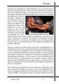 Oktober 2009 - Vaders Sellewie - Page 7