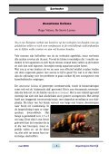 Mei 2013 - Vaders Sellewie - Page 5