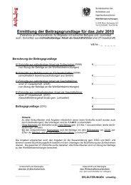 Ermittlung der Beitragsgrundlage für das Jahr 2010