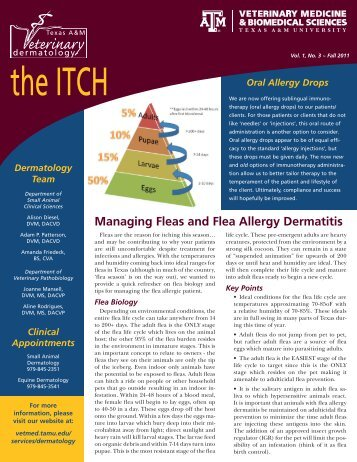 Download the ITCH - Fall 2011 - College of Veterinary Medicine