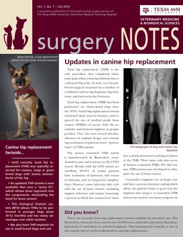 Updates in canine hip replacement - College of Veterinary Medicine ...