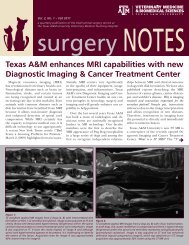 Download Surgery Notes - Fall 2011 - College of Veterinary ...