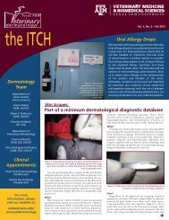 Download The ITCH - Fall 2012: Skin Scrapes - College of ...