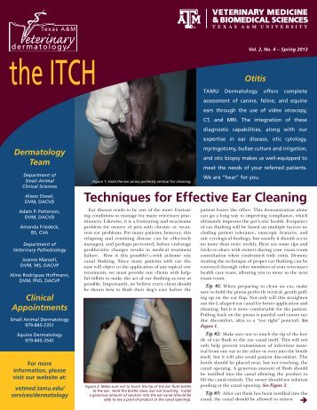 Download The ITCH - Spring 2013 - College of Veterinary Medicine ...