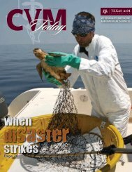 Disaster - College of Veterinary Medicine - Texas A&M University