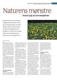 Naturens mønstre - fornyet jagt på lovmæssigheder - Viden (JP)