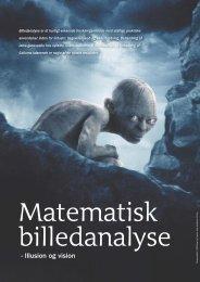 Matematisk billedanalyse - illusion og vision - Viden (JP)