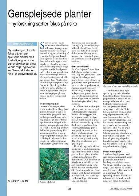 Gensplejsede planter - ny forskning sætter fokus på risiko - Viden (JP)