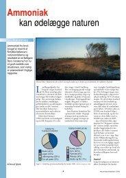 Ammoniak kan ødelægge naturen - Viden (JP)