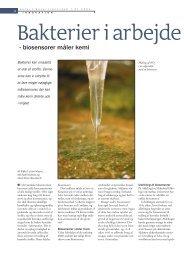 Bakterier i arbejde - Viden (JP)