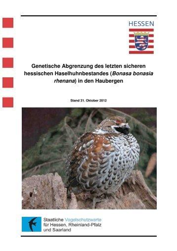 Haselhuhn-Genetik - Staatliche Vogelschutzwarte für Hessen ...