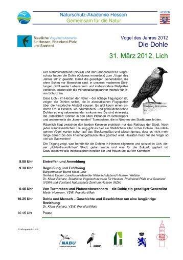 Dohle-Vogel des Jahres - Staatliche Vogelschutzwarte für Hessen ...