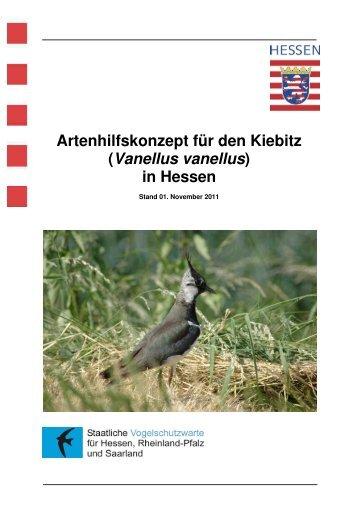 Artenhilfskonzept für den Kiebitz - Staatliche Vogelschutzwarte für ...