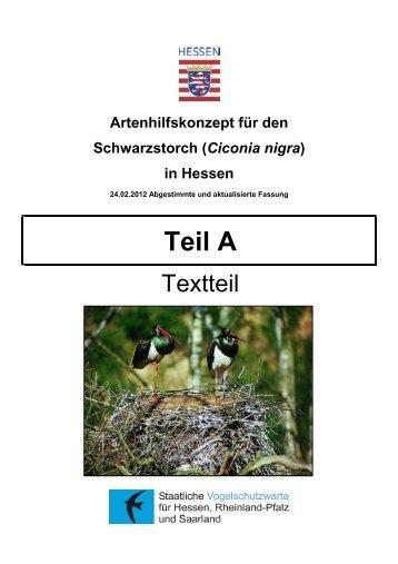Schwarzstorch_Stand 02-2012 - Staatliche Vogelschutzwarte für ...