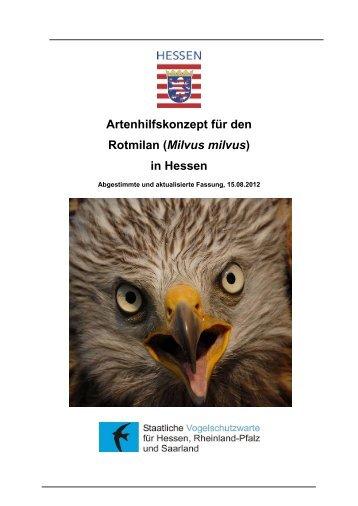 Rotmilan - Staatliche Vogelschutzwarte für Hessen, Rheinland-Pfalz