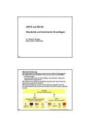 UMTS und WLAN Standards und technische Grundlagen