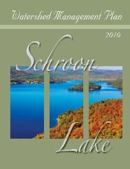 Schroon Lake Management Plan - Warren County Soil and Water ...