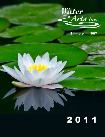 S i n c e     1987 - Water Arts Inc.