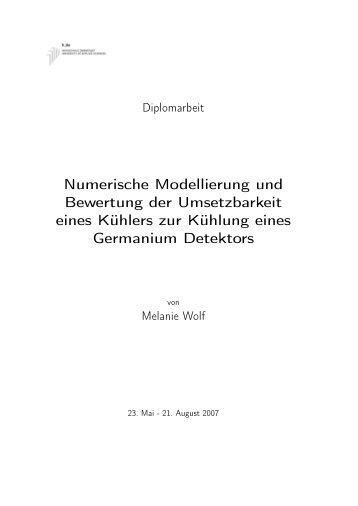 Numerische Modellierung und Bewertung der Umsetzbarkeit ... - GSI
