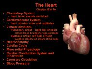 Heart Rate - GCC links