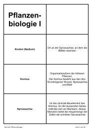 Pflanzen- biologie I