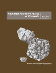 Common Paleozoic fossils of Wisconsin - Wisconsin Geological and ...