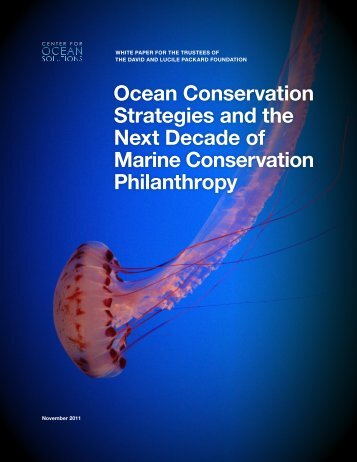 Ocean Conservation Strategies and the Next Decade of Marine ...