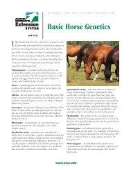 Basic Horse Genetics - Alabama Cooperative Extension System