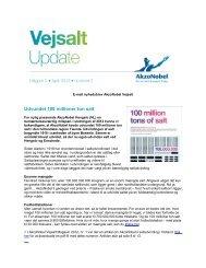Vejsalt Update nr. 2 - april 2013 - AkzoNobel