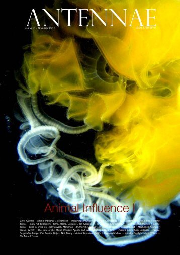 Animal Influence I - Antennae The Journal of Nature in Visual Culture