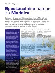 Spectaculaire natuur op Madeira