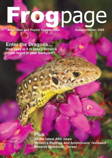 Enter the Dragons… Plus - Amphibian and Reptile Conservation