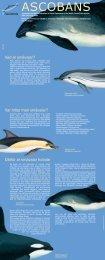 Överenskommelse om skydd av småvalar i Östersjön ... - ASCOBANS