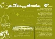 bauen schauen - aspern + Die Seestadt Wiens