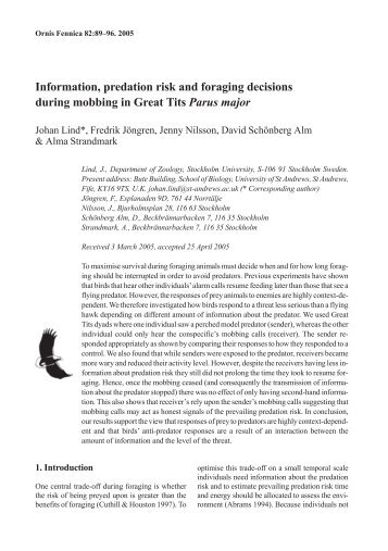 Information, predation risk and foraging decisions during ... - Avibirds