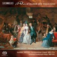 WEDDING CANTATA – Weichet nur, betrübte ... - Bach Cantatas