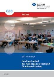 BGI 838 - Berufsgenossenschaft Holz und Metall