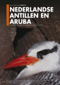 Download - BirdLife International - Page 2