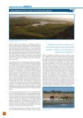 Download - BirdLife International - Page 4