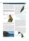 Download - BirdLife International - Page 5