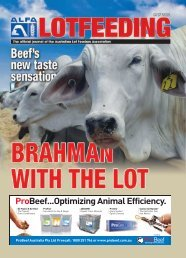 Lot Feeding Journal - Australian Brahman Breeders Association