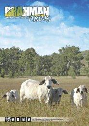 DOWNLOAD PDF 9.6mb - Australian Brahman Breeders Association