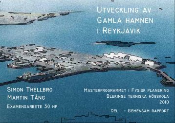 gemensam rapport del 1.pdf - Blekinge Tekniska Högskola