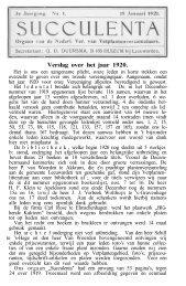 Verslag over het jaar 1920.
