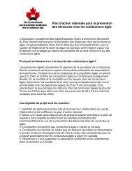 Plan d'action nationale pour la prévention des blessures chez les ...