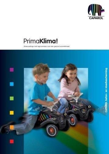 Download Brochure - Caparol