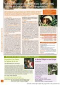 Palais Farnèse - Clio - Page 4