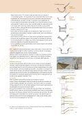 33. Bladkoper op monumenten (2003) - Rijksdienst voor het ... - Page 5
