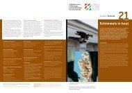 21. Schimmels in hout - Rijksdienst voor het Cultureel Erfgoed