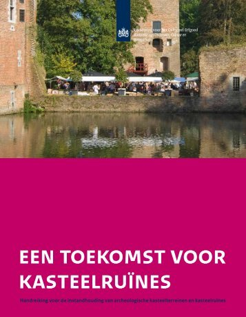 Een toekomst voor kasteelruïnes - Rijksdienst voor het Cultureel ...